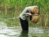 Изучение водных микроорганизмов